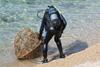 Toyota Croatia - Eko akcija čišćenja mora